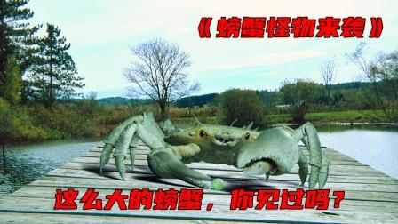 这螃蟹好可怕
