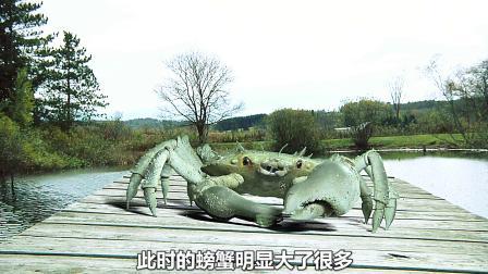 螃蟹吃了实验葡萄,没想瞬间长成了卡车大小