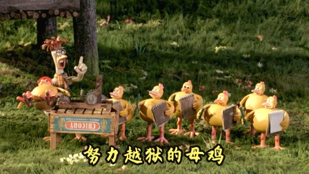 小鸡为了不被主人杀掉,努力学习越狱,搞笑动物电影
