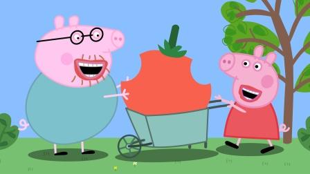 小猪佩奇小推车推着巨型番茄给猪爸爸