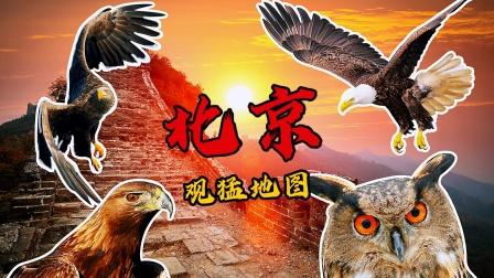 北京观猛地图:10个观看猛禽的地点