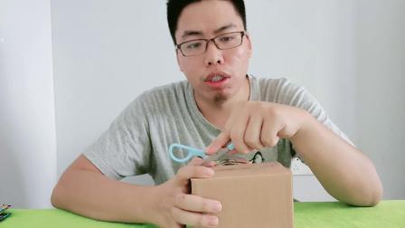 盲盒开箱:这个怪兽像火鸡