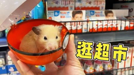 带小仓鼠去逛超市,给小主人买玩具奇趣蛋