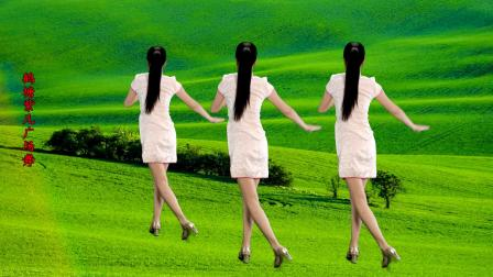 精选广场舞,优美36步《红梅赞》背面演示