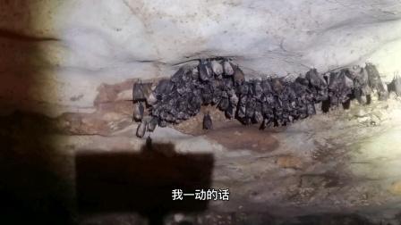 张华丽进入山洞后发现惊人的一幕,千百年来无人居住被他们占领