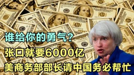 谁给你的勇气?张口就要6000亿,美商务部部长请中国务必帮忙