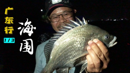 游钓广东,老曹在汕头和钓友们钓得太爽了!这些鱼你都认识吗?