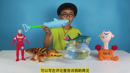 小泽开箱玩鲨鱼造型水枪玩具,还有会爬行的组装鳄鱼玩具
