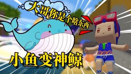 迷你世界荒岛815:昨天才钓的鱼!没想到第二天变成了神鲸!