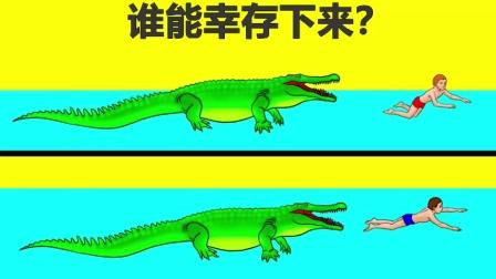 脑力测试:遇到鳄鱼的男人,谁是幸存者?