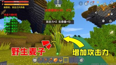 迷你世界:攻击力大作战,在这个模式里,任何东西都能增加攻击力