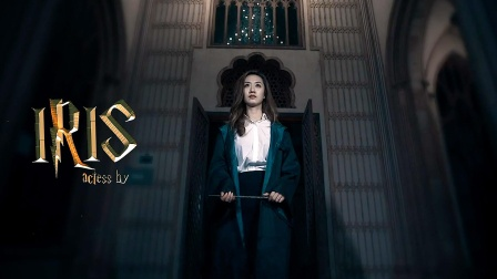 [Lin&Iris]·Magical themed Wedding Movie·LovingTime production