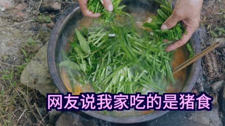 网友说我家吃的是猪食,这是贵州酸汤鱼,网友想吃还吃不到
