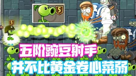 植物大战僵尸:五阶豌豆射手非常值得升五阶!不比卷心菜弱!