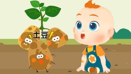 JOJO认知启蒙:爱跳舞的土豆 宝宝巴士游戏