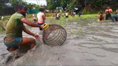 印度男人下水摸鱼,全村都出动了,看谁抓得多鱼?