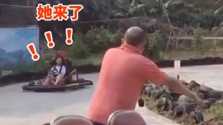 """卡丁车惊现""""马路杀手"""",直接给大爷吓懵!"""