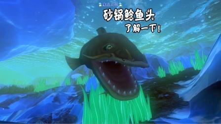 """天铭 海底大猎杀 第三季 71 可以做个""""砂锅鲶鱼头""""吗?没问题!"""