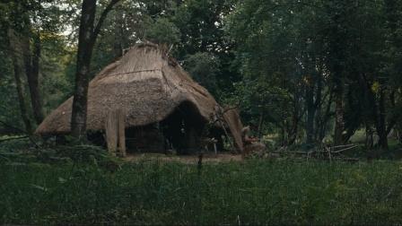 野外生存 林中生活 肉炖菜 芦苇茅草屋