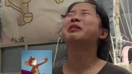 老鼠在女孩床上吃麦片,女孩崩溃大哭:我都没吃过!