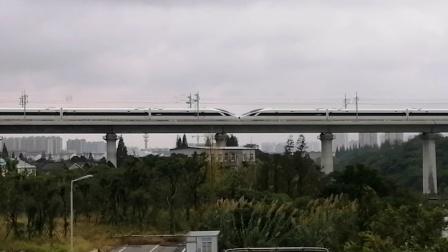 【连镇客专】G8277次(宿迁→上海)南京南动车所CR400BF重联担当