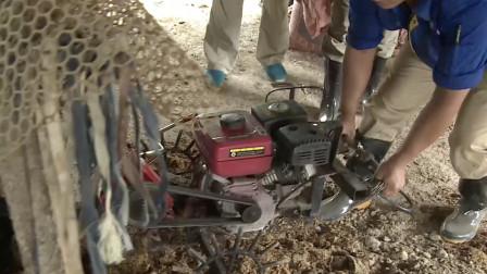 """养殖场遇上""""老汉""""翻耙机!无人操作灵活自如,效率直接提升10倍"""