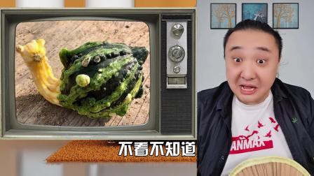 又有人让我鉴定奇葩蔬菜了!你们自己看吧
