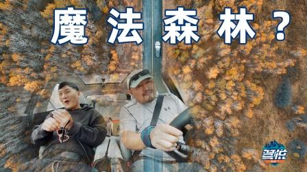 自驾SUV跨越五省,寻找中国最美秋景!