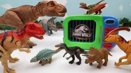 恐龙玩具故事:恐龙的种类到底有多少?都叫什么恐龙你们知道吗?