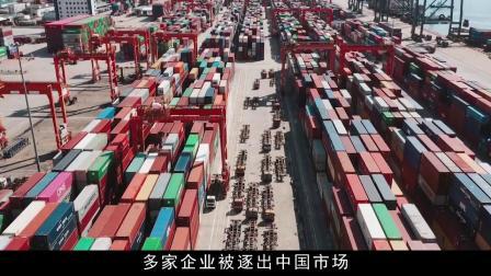 这就是挑衅中国的下场!中国主权神圣不可侵犯,给全世界一