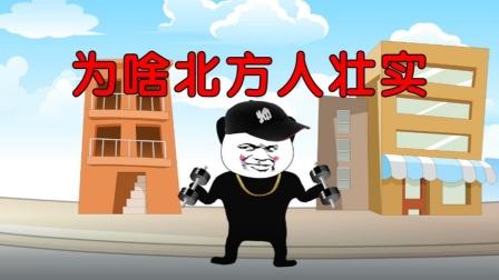 沙雕动画:你知道为什么北方比南方人壮吗?太搞笑了