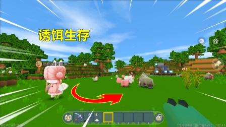 迷你世界:无法屠宰的世界,忆涵想吃肉,只能利用诱饵炸肉