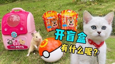 薯条里能寻宝,主人带猫咪和仓鼠连开3个薯条盲盒,真拆出了玩具