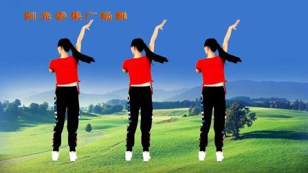 流行DJ广场舞《相思的债》背面带你跳,64步动感优美