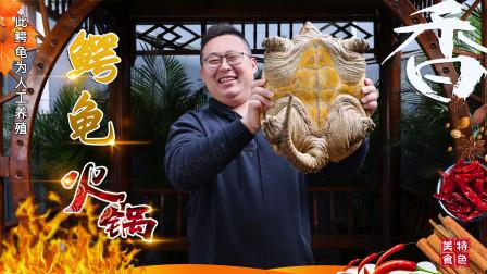 """960买只大鳄龟,半吨请朋友吃""""鳄龟火锅""""滑滑嫩嫩,回味无穷"""
