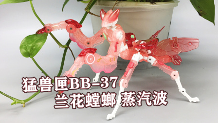 太惊艳了!52Toys猛兽匣BB37兰花螳螂蒸汽波 收割者改模 大鹏评测