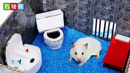 仓鼠挑战海洋监狱,窥探迷宫布局顺利逃脱