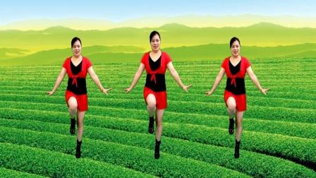 山歌广场舞《欢迎你到壮乡来》浓浓的壮乡情旋律动听舞蹈优美好看