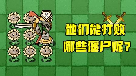 植物大战僵尸:8颗向日葵+向日葵骑士能打败哪些僵尸?