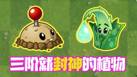 植物大战僵尸:这两个植物三阶就已经封神?三阶质变神器!