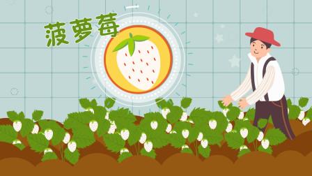 看着像草莓吃起来像菠萝,它是什么水果