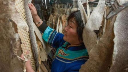 中国黑龙江的神奇民族,居然穿着鱼皮衣,鱼皮是如何做成衣服的?