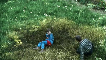 小男孩拥有可怕的超能力,只要受伤,周围的生物就会死亡