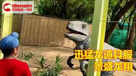 迅猛龙道具服逗乐印度观众 - 行走恐龙道具适用主题乐园