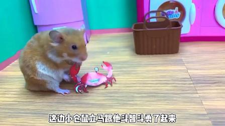 小猪肚子疼,仓鼠医生逃离迷宫,帮它看病!