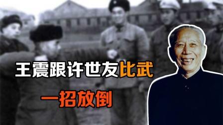 王震将军也是武功高手,跟许世友比武,一招就把他放倒了
