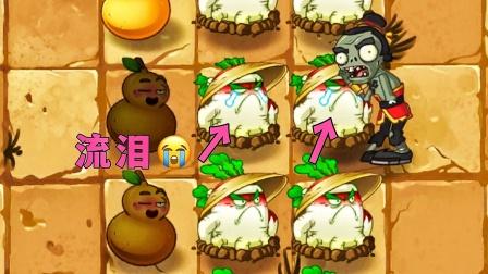 植物大战僵尸2:白萝卜被僵尸打哭了