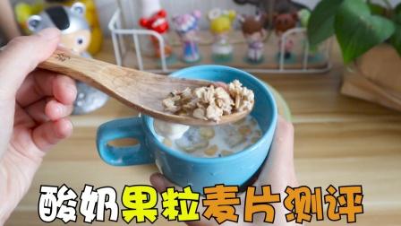 网红酸奶果粒麦片测评,一口下去口感超丰富,这也太香了吧!
