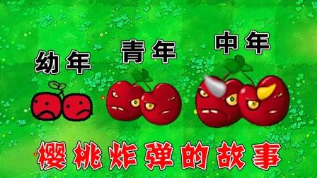 植物大战僵尸:樱桃炸弹的成长史!