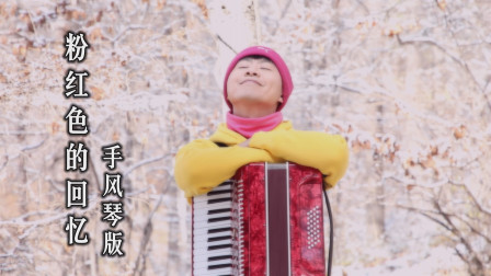 《粉红色的回忆》——手风琴演绎经典老歌